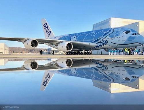 Il primo A380 di ANA esce dalla verniciatura con una livrea unica